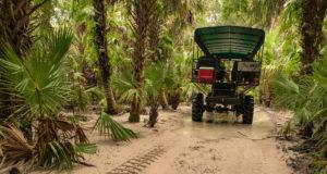 Florida Seminole Tourism - Billie Swamp Safari - Adventure Rides